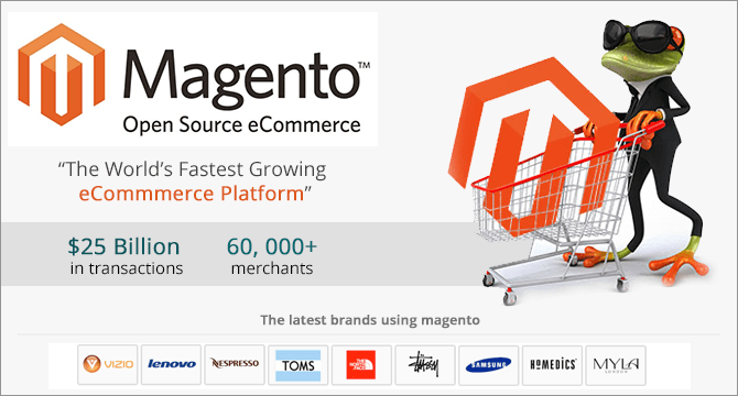 Magento Ecommerce Development