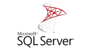 sql server web application